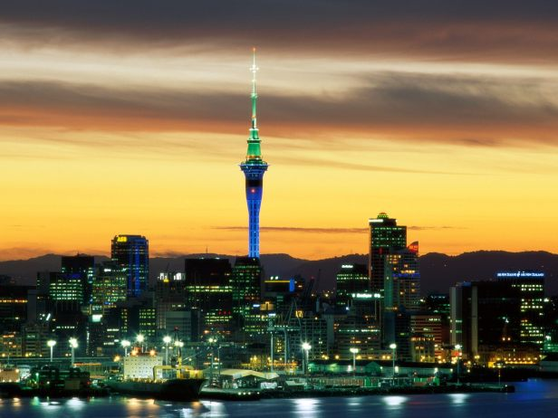 auckland-small-business-marketing